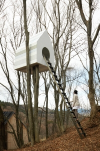 Birdhouse Market Research 10