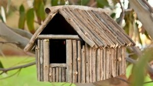 Birdhouse Market Research 14
