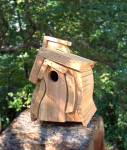 Birdhouse Market Research 31