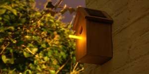 Birdhouse Market Research 42